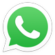 WhatsApp Logo 60